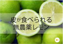 皮が食べられる無農薬レモン