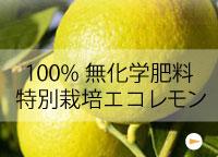 100%有機肥料nの特別栽培エコレモン